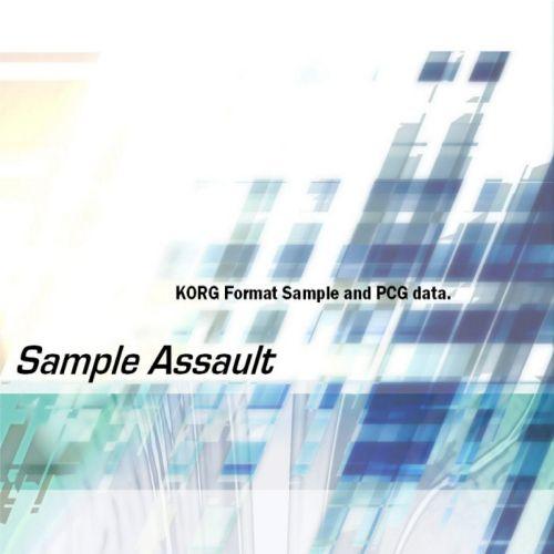 Sample Assault